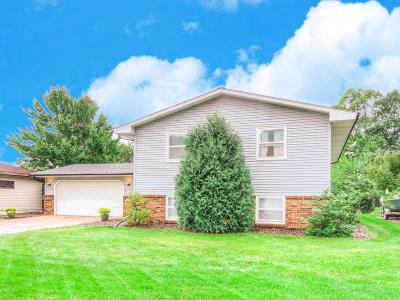 Anoka Single Family Home For Sale: 1038 Washington Street