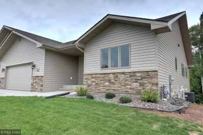 Duluth Single Family Home For Sale: 1114 Butternut Avenue
