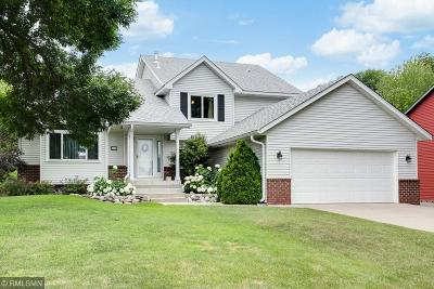 Wayzata, Plymouth Single Family Home For Sale: 4125 Xene Lane N