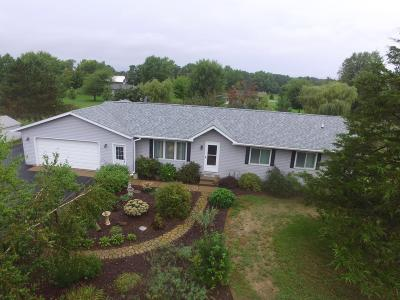 Durand Single Family Home For Sale: W5272 Pine Street