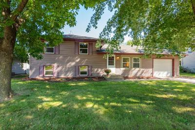 Apple Valley Single Family Home For Sale: 133 Garden View Drive
