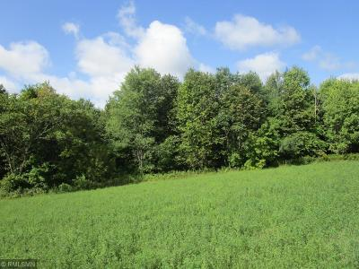 Spring Valley Residential Lots & Land For Sale: Xx Pierce/St. Croix Road