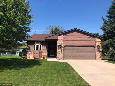Shoreview Single Family Home For Sale: 265 Oakwood Drive