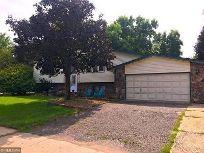 Anoka Single Family Home For Sale: 1010 Grant Street