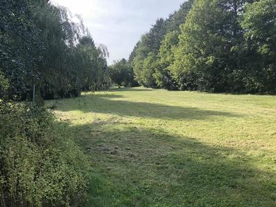 Residential Lots & Land For Sale: 976x Birchview Road