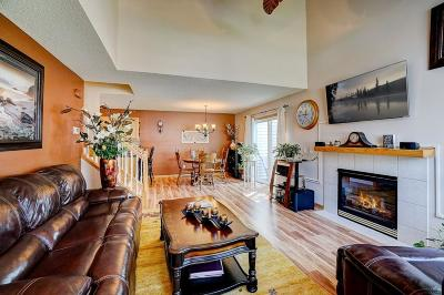 Prior Lake Condo/Townhouse For Sale: 17306 Lilac Lane SE