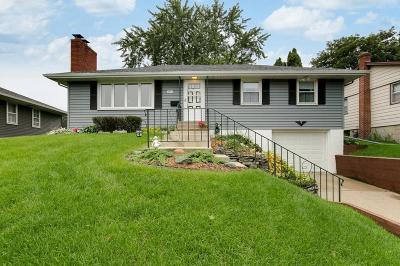 South Saint Paul Single Family Home For Sale: 1911 3rd Street N