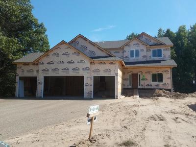 Ham Lake Single Family Home For Sale: 3524 172nd Lane