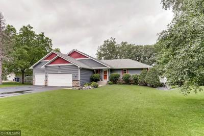 Chisago County Single Family Home Contingent: 25920 E Comfort Drive