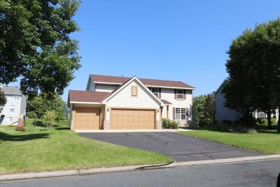 Chanhassen Single Family Home For Sale: 9148 Sunnyvale Drive