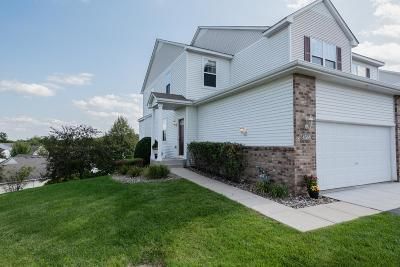 Inver Grove Heights Condo/Townhouse For Sale: 4588 Blaylock Circle #3801