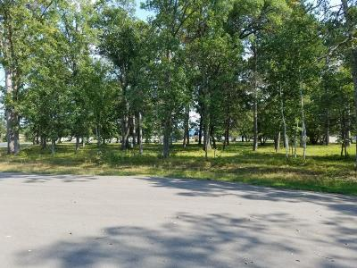 Crosslake Residential Lots & Land For Sale: Lot 2 Addi Lane