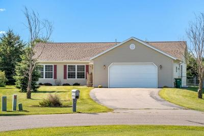 Single Family Home For Sale: 13 Steinhart Circle
