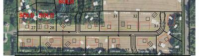 Residential Lots & Land For Sale: Xxx 205th Lane NW