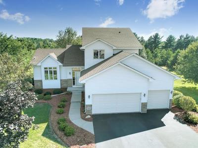 East Bethel Single Family Home For Sale: 4554 194th Avenue NE
