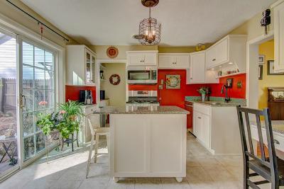 Stillwater Single Family Home For Sale: 205 Marsh Street E