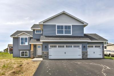 New Richmond Single Family Home For Sale: 933 Hidden Lane