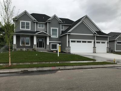 Ham Lake Single Family Home For Sale: 137xx Ghia Street NE