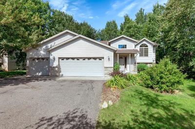 Saint Cloud Single Family Home For Sale: 1831 37th Street S