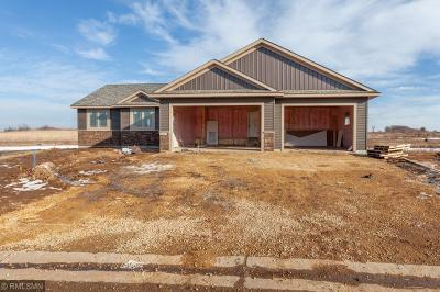New Richmond Single Family Home For Sale: 1553 Otter Way