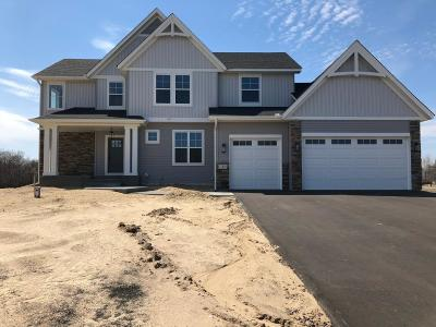 Ham Lake Single Family Home For Sale: 17438 Polk Street NE