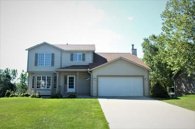 Wayzata, Plymouth Single Family Home For Sale: 16535 43rd Avenue N