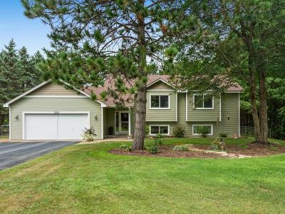 Andover Single Family Home For Sale: 3339 174th Lane NW