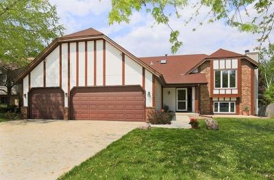 Apple Valley Single Family Home For Sale: 5727 126th Street W
