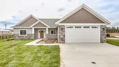 Saint Joseph Single Family Home For Sale: 522 7th Avenue SE