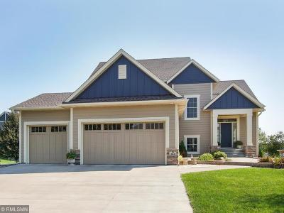 Blaine Single Family Home For Sale: 11631 Edison Street NE