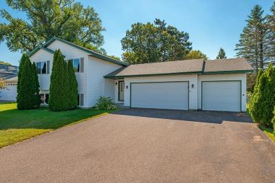 North Branch Single Family Home Contingent: 6531 377th Street