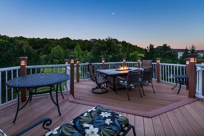 Chanhassen Single Family Home For Sale: 1443 Bethesda Circle
