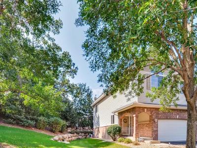 Eagan Condo/Townhouse For Sale: 604 Crane Creek Lane