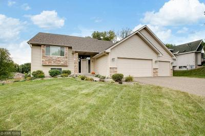 Inver Grove Heights Single Family Home For Sale: 7971 Claiborne Lane