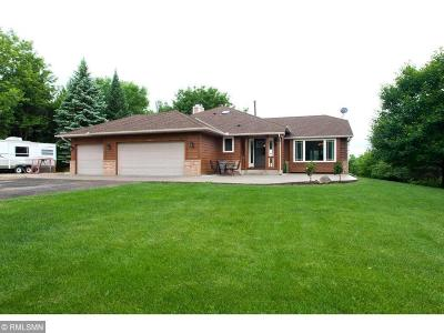 Lakeville Single Family Home For Sale: 21680 France Boulevard