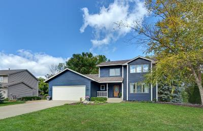 Chanhassen Single Family Home For Sale: 8653 Chanhassen Hills Drive N