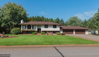 Andover Single Family Home For Sale: 4531 146th Avenue NW