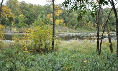 Pequot Lakes Residential Lots & Land For Sale: 29084 Voyagers Pass