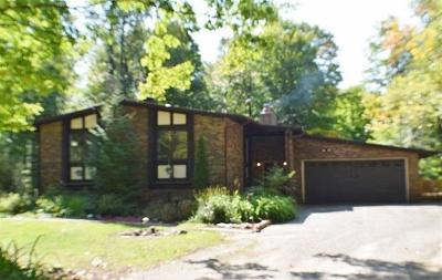 Grand Rapids Single Family Home For Sale: 1741 Oakdale Drive