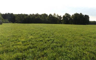 Brook Park Residential Lots & Land For Sale: 3177 Pokegama Creek Road