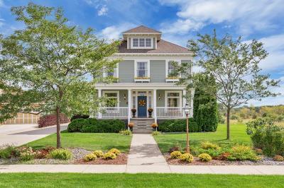 Sartell, Sauk Rapids Single Family Home For Sale: 3228 Old Stone Way NE