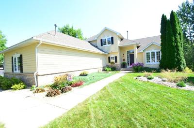 Prior Lake Single Family Home For Sale: 4181 Hidden Pond Trail NE