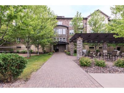 Eden Prairie Condo/Townhouse For Sale: 13560 Technology Drive #1309