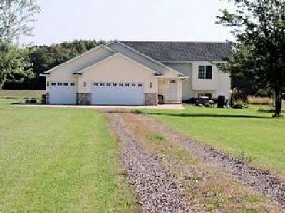Pine City Single Family Home For Sale: 56781 Maple Avenue