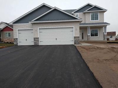 Ham Lake Single Family Home For Sale: 16327 E Lake NEtta Drive NE