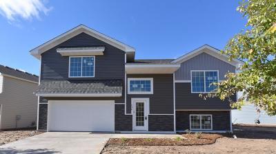 Brainerd Single Family Home For Sale: 738 Holton Avenue
