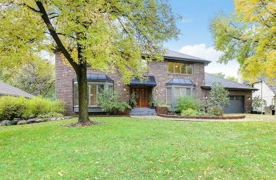 Wayzata, Plymouth Single Family Home For Sale: 3790 Rosewood Lane N