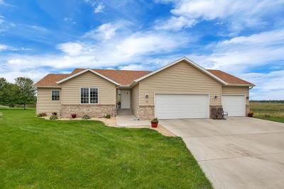 Sauk Rapids Single Family Home For Sale: 2013 Martini Drive