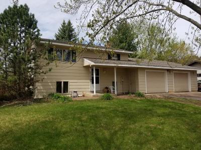 Saint Cloud Single Family Home For Sale: 2887 Cooper Avenue S