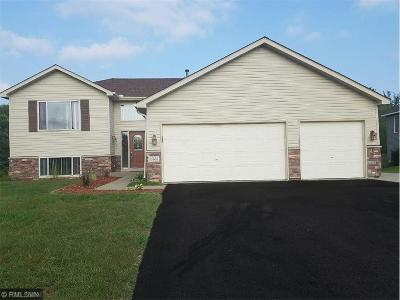 Lakeville MN Single Family Home For Sale: $315,000